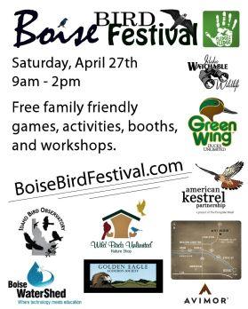 Bird-Festival-Flyer